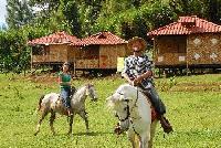 Finca Neblina del Bosque - Horseback Riding Vacations in Nicaragua!