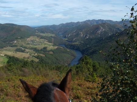 Holiday Company, B & B for Horses, Horse Trekking Station, Dude/Guest Ranch, Working Ranch, Ranch Resort, Ranch with Winter Snow Activities, Farm, Riding Stable, B & B for Horsemen, Western Riding Stable in Green Lake BC