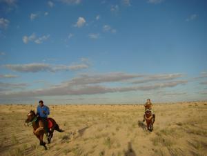 Galloping through the desert