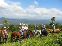 Horseback Riding Vacations at the Man from Kangaroo Valley Trail Ride - Riding in Australia!