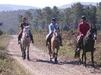 Horse Riding near Gois in the  green heart of Mid Portugal!