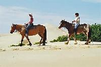 Riding holidays for everyone at the Sahara Trails in Port Stephans/Australia