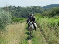'Podere Le Baruti' your dream holidays in the heart of Tuscany