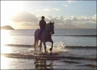 View natures splendor as you ride horseback across volcanic mudflows to a deserted beach!