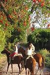SAYTA - Horseback Riding in Chicoana-Salta, Argentina!