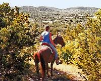 Deluxe accommodation in the Texas Hill Country offering private, personalized, scenic trailrides