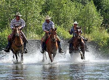 Three Bars Ranch in Cranbrook / British Columbia