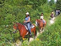 Horseback Riding Vacations: Priv. acres,  mtn. views, on the Saco R..Stay at the inn & Ride.