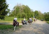 R&R Dude Ranch a Horseback Riding Adventure on a real working horse ranch in Western New York