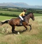 Horse riding holidays in New Zealand at Kowhai Farm