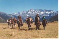 Multi day Pack trips in New Zealand - Horseback Riding Vacations in North Canterbury, Hawarden!
