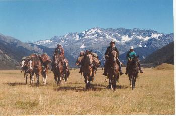 Alpine Horse Safaris in Hawarden / South island
