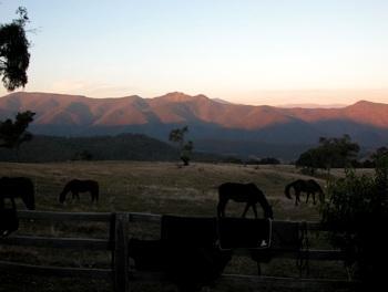 Snowy Range Horseback Tours in Victoria / Victoria