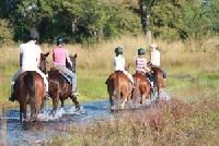 Kande Horse - Horseback Riding Vacations in Kande, Nkhata Bay South, Malawi - Riding in Africa!