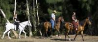 American Horse Trails -  Horseback Riding in South Florida, located in Southwest Broward County