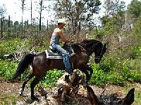 Makin´ Tracks Trail Rides - guided trail rides in the Oklawaha River Management Area in Florida, USA