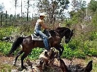 Makin´ Tracks Trail Rides - montar a caballo en Florida central en la gerencia del río de Oklawaha