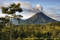 Leaves and Lizards Arenal Volcano Cabin Retreat - Riding holidays in Costa Rica