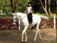 Japalouppe Equestrian Center - Riding School - Horseback Riding Vacations near Pune, India!