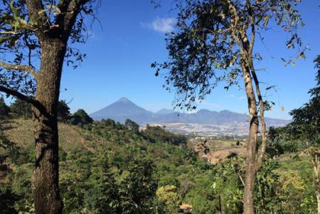 El Terreno en  Guatemala / Todas las Regiones