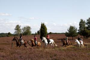 Property photo Riding holidays for children 2