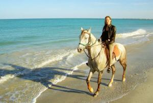 Riding at the Mediterranean Seashore