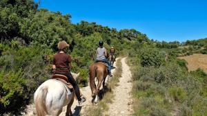 picture 3 from Rancho Riu de Gaià