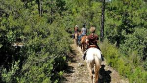 picture 2 from Rancho Riu de Gaià