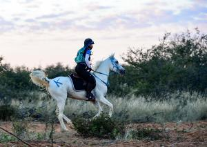 Introduction course in endurance riding
